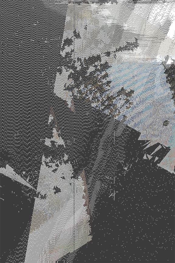 051_Tiger Carpet