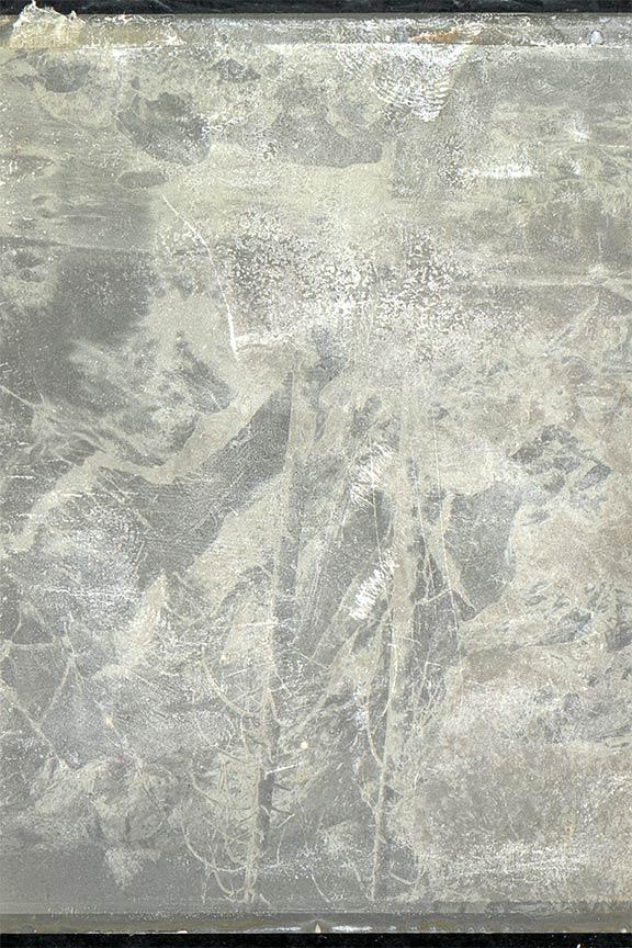 077_Super Dust Mite